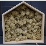 Okładzina ścienna z mchu (chrobotek) obraz domek mały OS-ODM