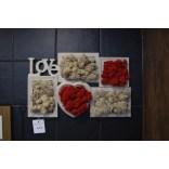 Okładzina ścienna z mchu (chrobotek) obraz szachownica OS-OSZ